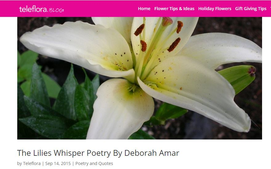 Teleflora Mentions Lilies Whisper Poetry